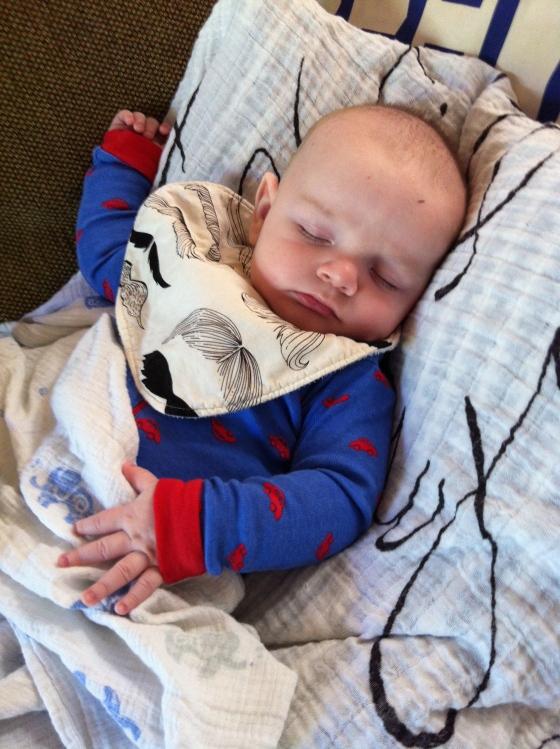Van sleeping on his favorite pillow